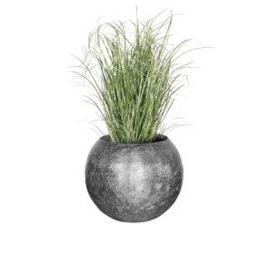 Roślina w donicy GEA Silver Fume